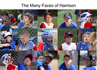 The Many Faces of Harrison